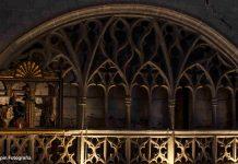 Papamoscas. Catedral. San Antolín. Palencia