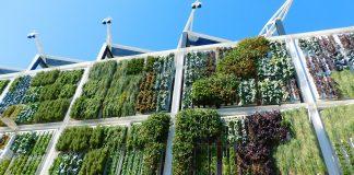 Este, denominado 'Palencia Naturelands' propone innovadoras actuaciones de naturalización de la ciudad a través del uso sostenible del suelo y de soluciones basadas en la naturaleza