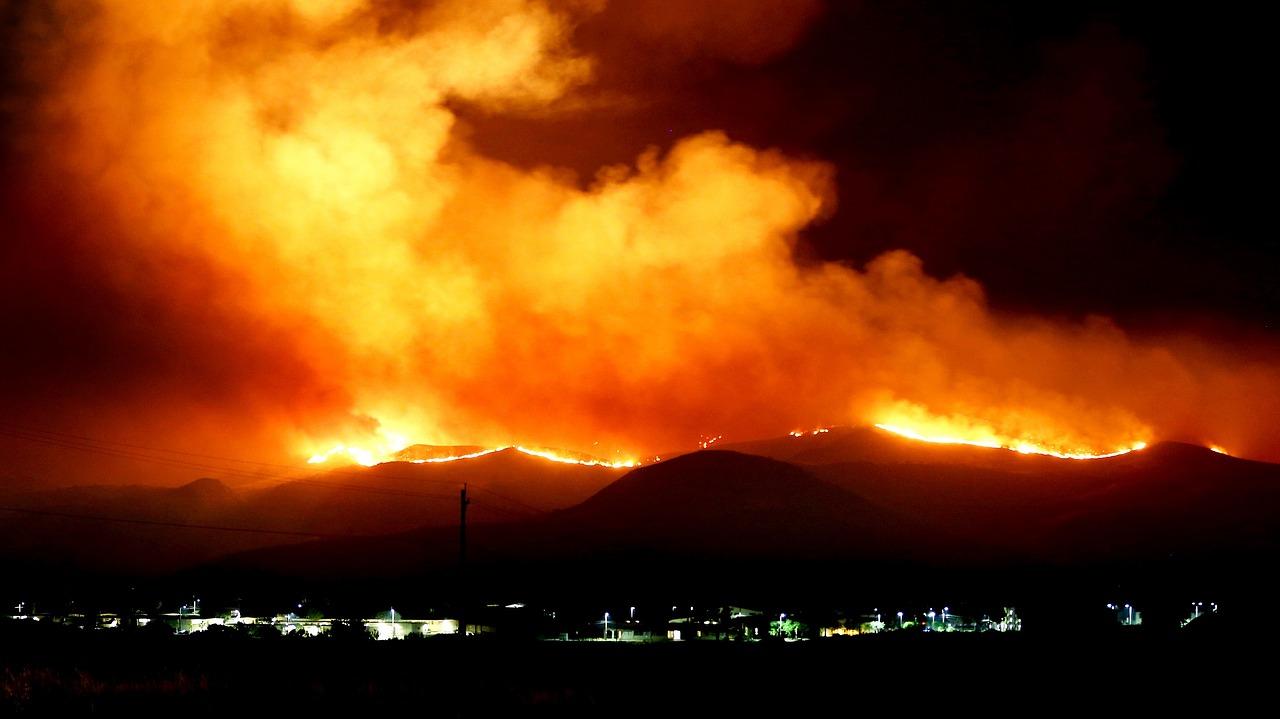 Declarado peligro medio de incendios forestales en Palencia