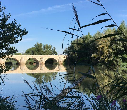 Torquemada Palencia
