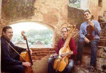 Este jueves 29, concierto en San Juan de Baños con el insólito instrumento baryton como protagonista