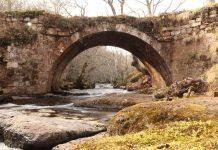 Brañosera aborda las oportunidades del entorno natural de la Montaña Palentina